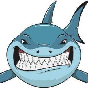 Genrep sponsorship - Baudouin - Shark Scramble